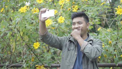 giới trẻ thi nhau lên vườn quốc gia ngắm hoa dã quỳ, ngắm dã quỳ tại ba vi