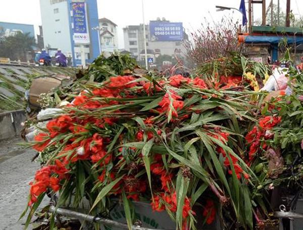 hàng trăm bó hoa lay ơn bị vứt bên lề đường mặc dù vẫn con tươi
