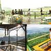 Top quán cafe đẹp ở Đà Lạt hút hồn giới trẻ