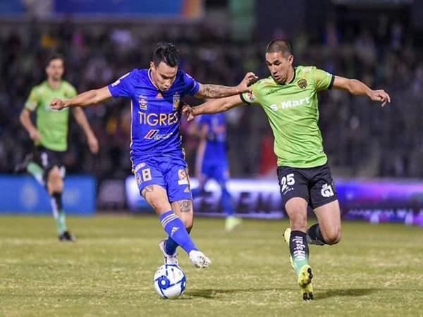 Nhận định bóng đá Juárez vs Tigres UANL, 9h00 ngày 15/4
