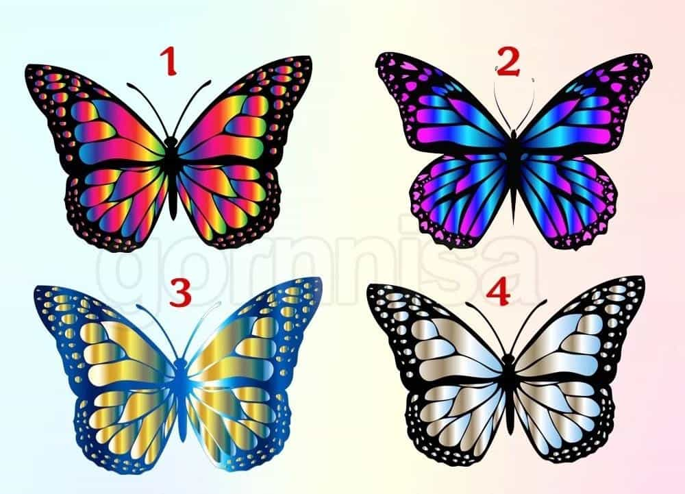 Mơ thấy con bướm điềm báo gì đánh số gì chắc trúng lớn